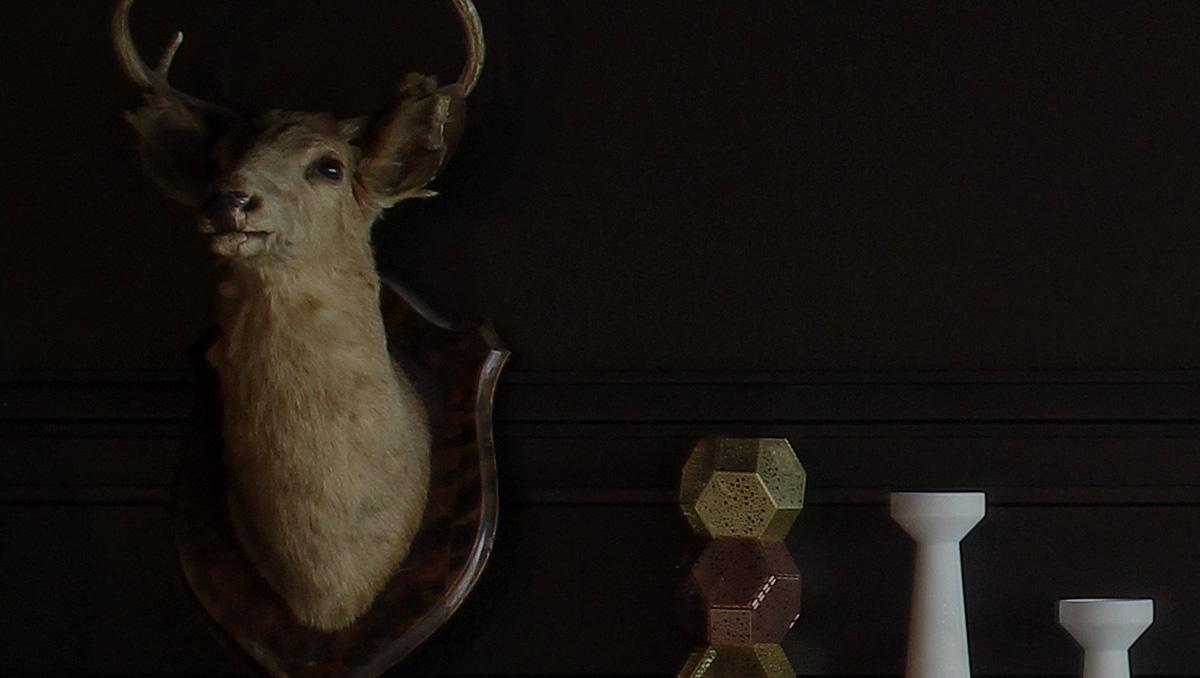 Na imagem há uma cabeça de cervo empalhada em uma parede junto à outros ornamentos.